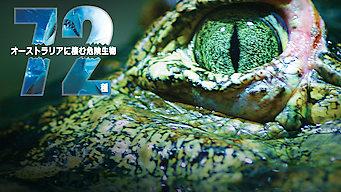 オーストラリアに棲む危険生物72種