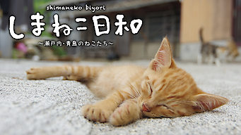 しまねこ日和~瀬戸内・青島のねこたち~