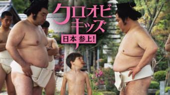 クロオビキッズ 日本参上!