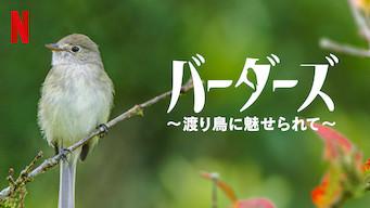 バーダーズ ~渡り鳥に魅せられて~