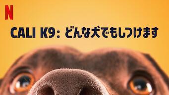 CALI K9: どんな犬でもしつけます