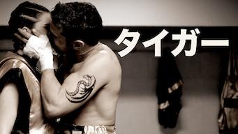 タイガー: 情熱のボクサー