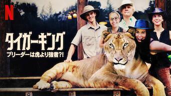 タイガーキング: ブリーダーは虎より強者?!