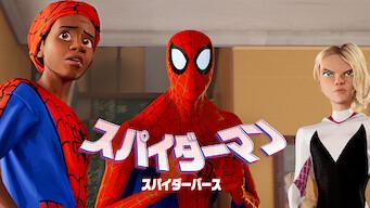 スパイダーマン: スパイダーバース