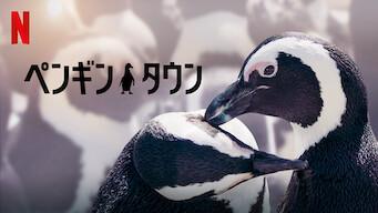 ペンギン・タウン