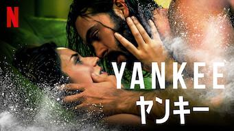 Yankee/ヤンキー